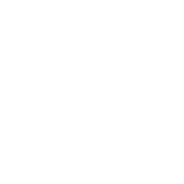 MOONFIELD FESTIVAL PARTNERS LOGO WASSALON